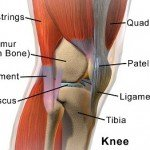 Workers' Compensation and Knee Injuries
