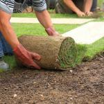 Landscaping Work Injury – St Louis Workmens Comp Attorneys